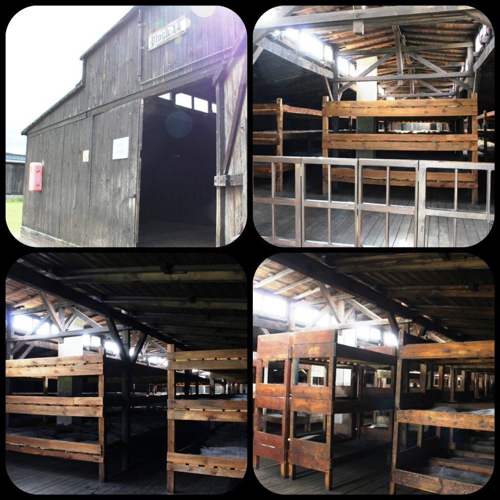 dormitori Majdanek